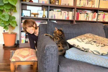 NHK Eテレ1月3日(日)午後6:00~午後6:25【ネコメンタリー猫も杓子も】「ヤマザキマリとベレン」放送です!