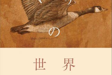 【JAL】3月31日(水)機内誌SKYWARDの連載をまとめた単行本「ヤマザキマリの世界逍遥録」発売!