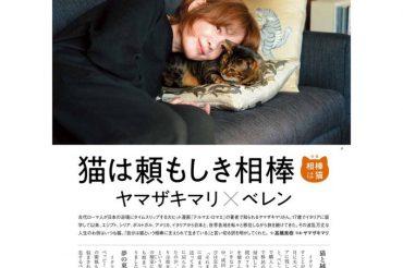 【猫びより】10月12日(火)発売の「猫びより」特集【相棒は猫】にベレンと掲載されました!